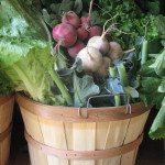 New Jersey CSA Farm Produce